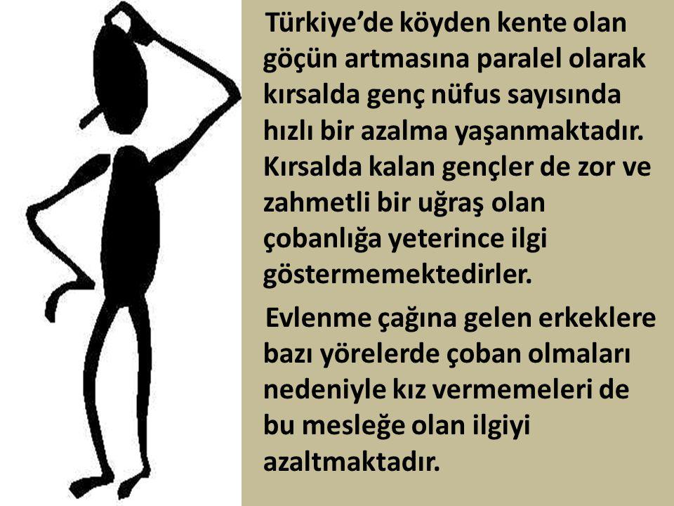 Türkiye'de köyden kente olan göçün artmasına paralel olarak kırsalda genç nüfus sayısında hızlı bir azalma yaşanmaktadır. Kırsalda kalan gençler de zo