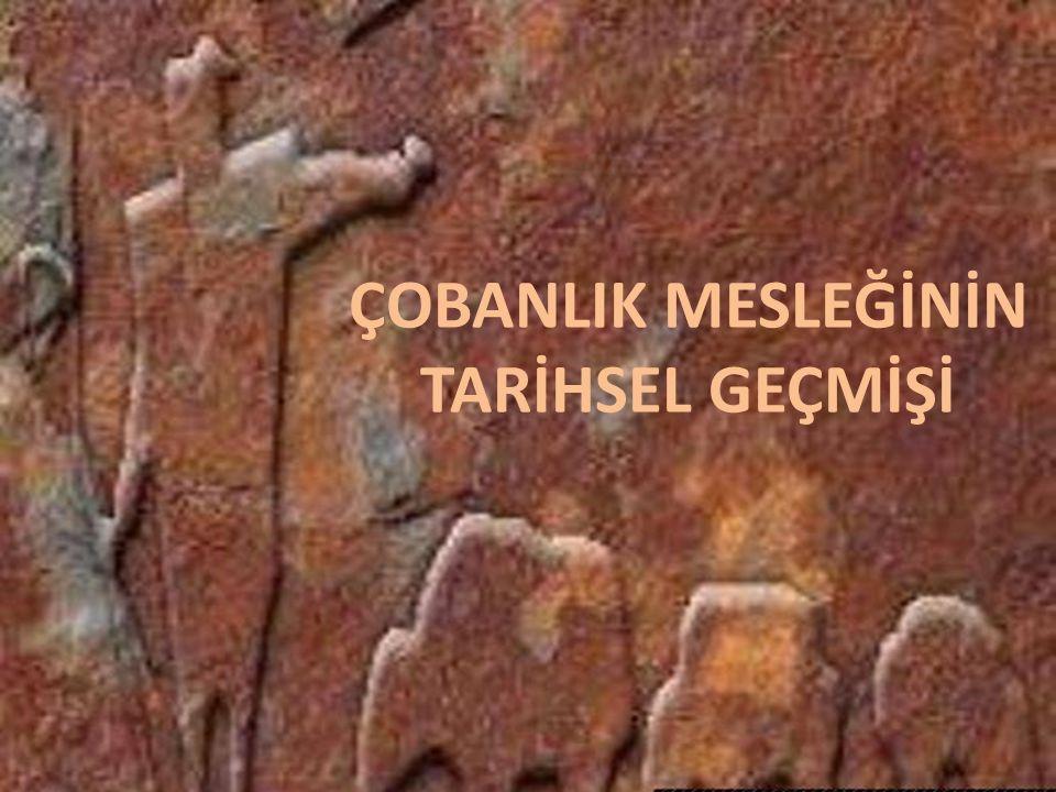 Çobanlık, Anadolu'da yaklaşık 6.000 yıl öncesine dayanan en eski meslekler biridir.