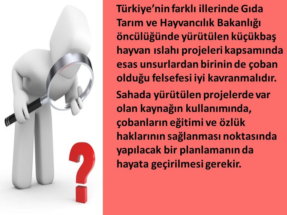 Türkiye'nin farklı illerinde Gıda Tarım ve Hayvancılık Bakanlığı öncülüğünde yürütülen küçükbaş hayvan ıslahı projeleri kapsamında esas unsurlardan bi