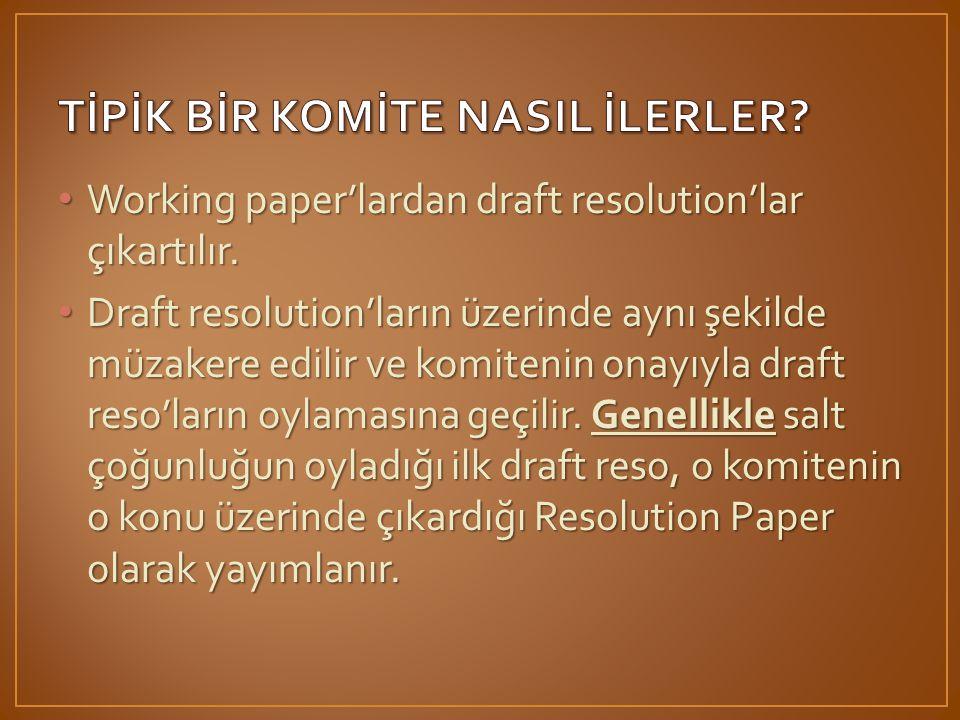 • Working paper'lardan draft resolution'lar çıkartılır.