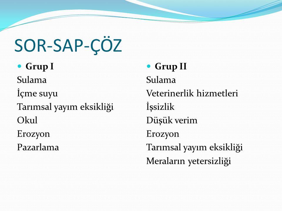 SOR-SAP-ÇÖZ  Grup I Sulama İçme suyu Tarımsal yayım eksikliği Okul Erozyon Pazarlama  Grup II Sulama Veterinerlik hizmetleri İşsizlik Düşük verim Er