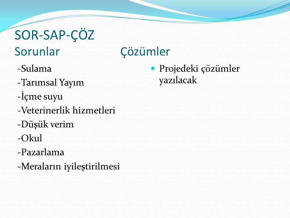 SOR-SAP-ÇÖZ Sorunlar Çözümler -Sulama -Tarımsal Yayım -İçme suyu -Veterinerlik hizmetleri -Düşük verim -Okul -Pazarlama -Meraların iyileştirilmesi  P