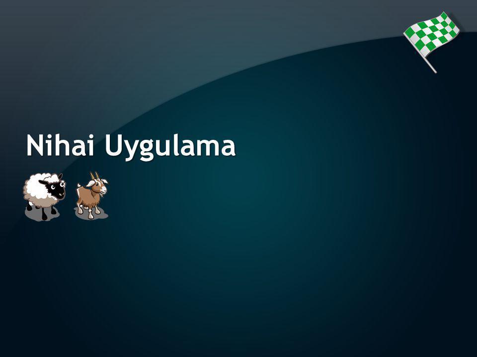 Nihai Uygulama