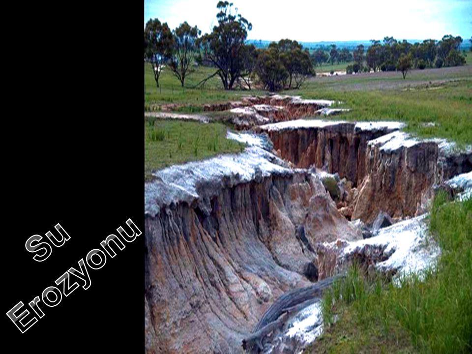 Erozyon Çeşitleri •Su Erozyonu:Yağmurun, araziler üzerinde oluşturduğu yüzeysel akışlar ve akarsuların etkisiyle toprağın aşınması ve taşınması olayıd