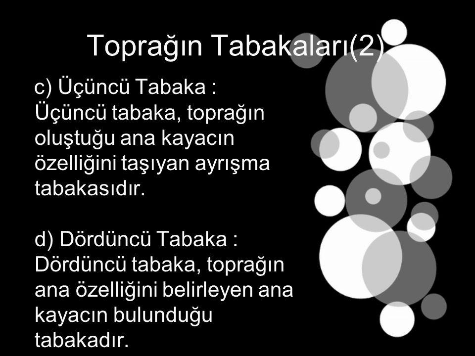 Toprağın Tabakaları(2) c) Üçüncü Tabaka : Üçüncü tabaka, toprağın oluştuğu ana kayacın özelliğini taşıyan ayrışma tabakasıdır.