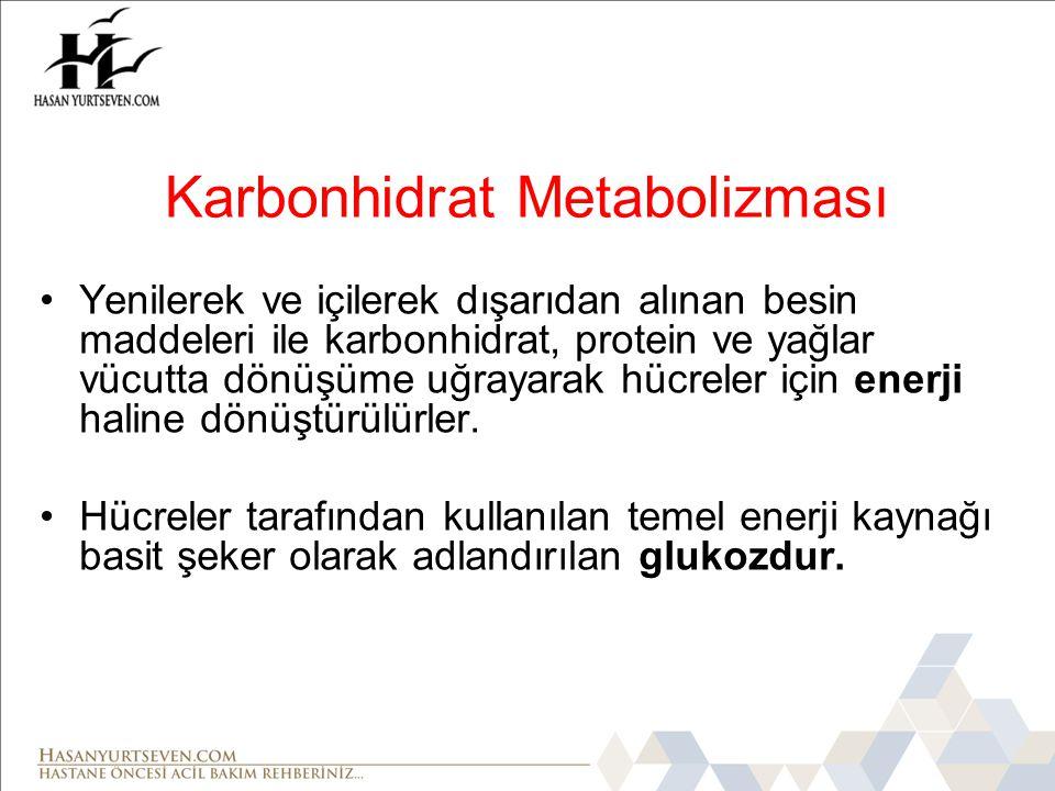 Karbonhidrat Metabolizması •Hücreler büyümek ve fonksiyonlarını yürütmek için gerekli enerjiyi glukozu kullanarak üretirler.