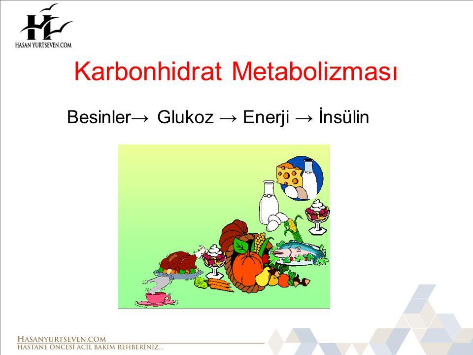 Besinler→ Glukoz → Enerji → İnsülin Karbonhidrat Metabolizması