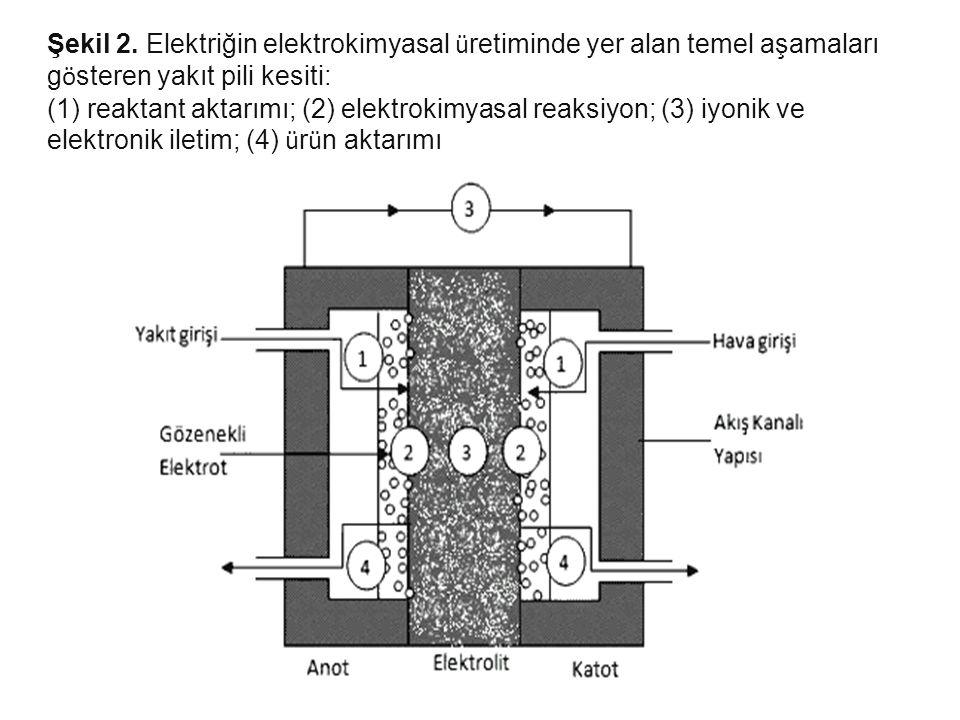 Şekil 2. Elektriğin elektrokimyasal ü retiminde yer alan temel aşamaları g ö steren yakıt pili kesiti: (1) reaktant aktarımı; (2) elektrokimyasal reak