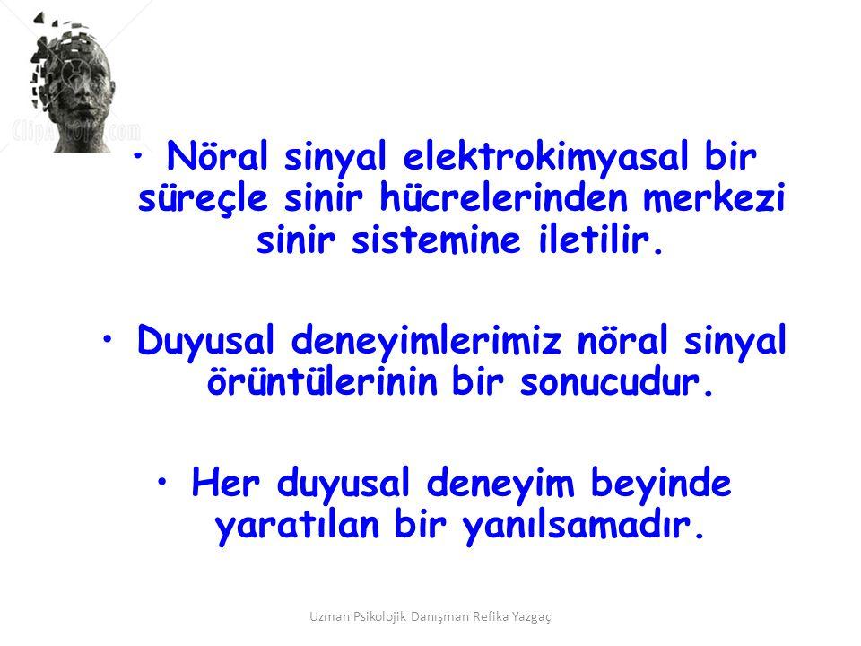 Uzman Psikolojik Danışman Refika Yazgaç •Nöral sinyal elektrokimyasal bir süreçle sinir hücrelerinden merkezi sinir sistemine iletilir. •Duyusal deney