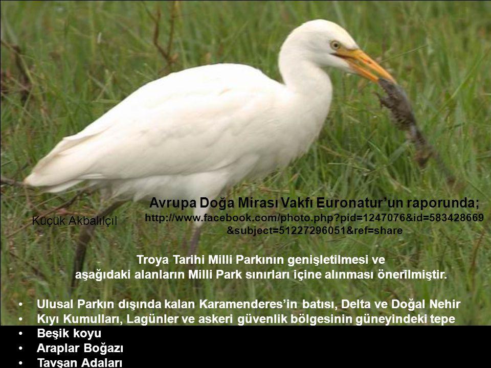 Avrupa Doğa Mirası Vakfı Euronatur'un raporunda; http://www.facebook.com/photo.php?pid=1247076&id=583428669 &subject=51227296051&ref=share Troya Tarihi Milli Parkının genişletilmesi ve aşağıdaki alanların Milli Park sınırları içine alınması önerilmiştir.