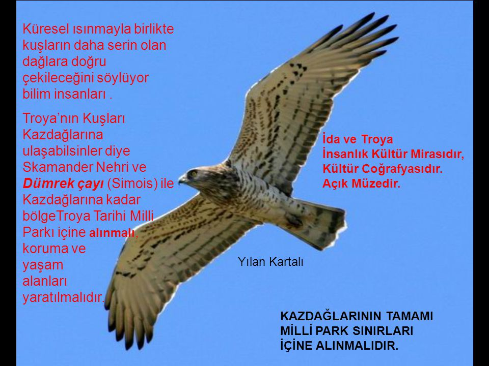 Avrupa Doğa Mirası Vakfı Euronatur'un raporunda; http://www.facebook.com/photo.php?pid=1247076&id=583428669 &subject=51227296051&ref=share Troya Tarih