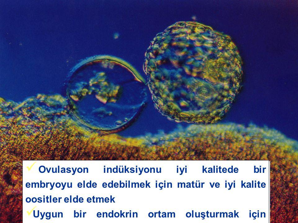Yaş  = Oocyt kalitesi , FSH  = Oocyt sayısı  Toner JP, Fertil Steril, 2003 * % Grup I (n=50) yaş≥41,FSH<15 Grup II (n=36) Yaş<41,FSH≥ 15 p Siklus iptal 831<0.01 Impl.