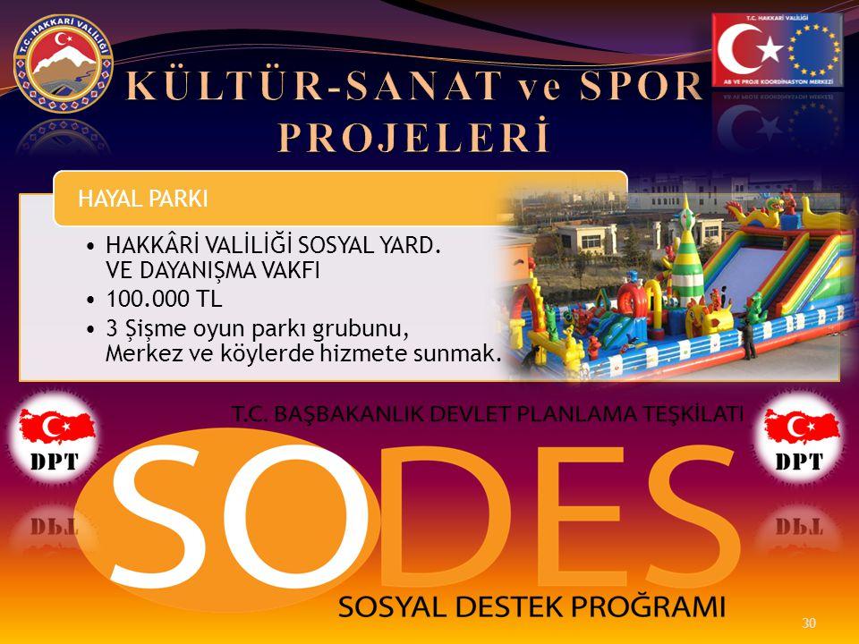 •HAKKÂRİ VALİLİĞİ SOSYAL YARD. VE DAYANIŞMA VAKFI •100.000 TL •3 Şişme oyun parkı grubunu, Merkez ve köylerde hizmete sunmak. HAYAL PARKI 30