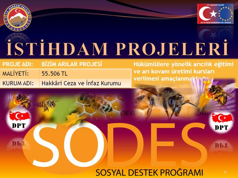 PROJE ADI:BİZİM ARILAR PROJESİHükümlülere yönelik arıcılık eğitimi ve arı kovanı üretimi kursları verilmesi amaçlanmaktadır. MALİYETİ:55.506 TL KURUM