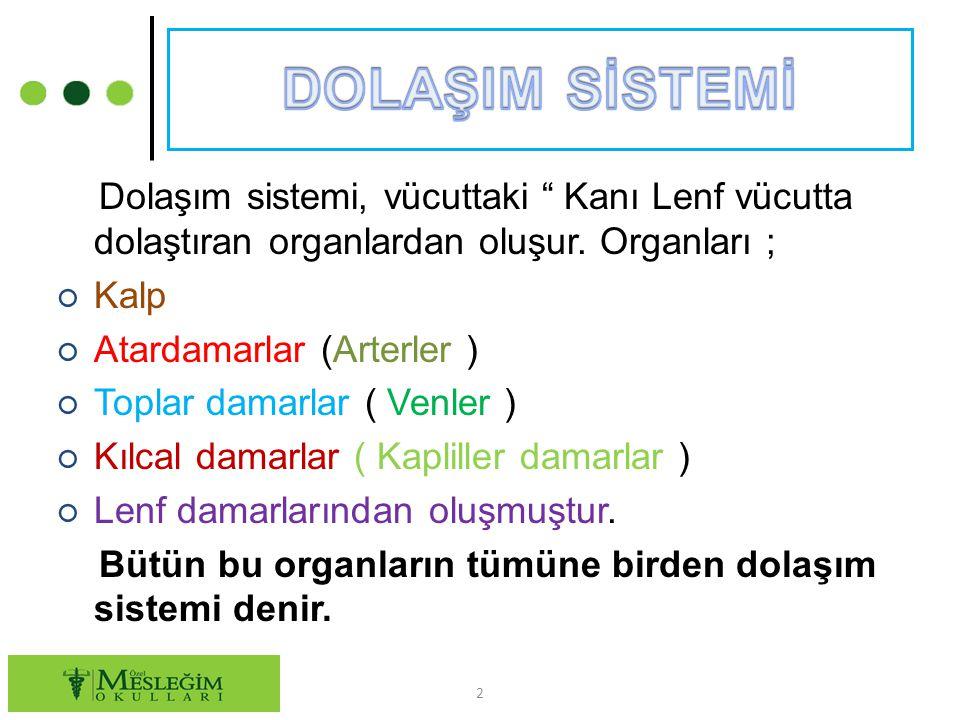 """Dolaşım sistemi, vücuttaki """" Kanı Lenf vücutta dolaştıran organlardan oluşur. Organları ; ○ Kalp ○ Atardamarlar (Arterler ) ○ Toplar damarlar ( Venler"""