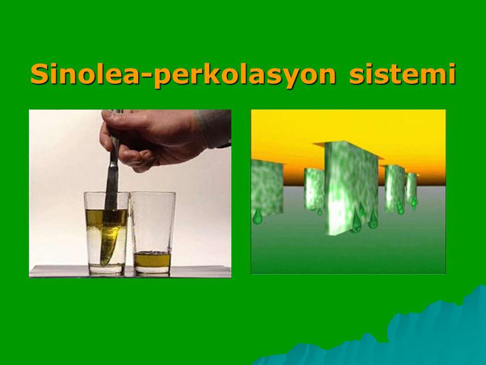 Sinolea-perkolasyon sistemi