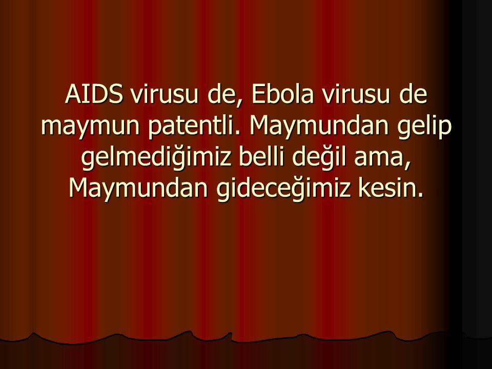 AIDS virusu de, Ebola virusu de maymun patentli. Maymundan gelip gelmediğimiz belli değil ama, Maymundan gideceğimiz kesin.