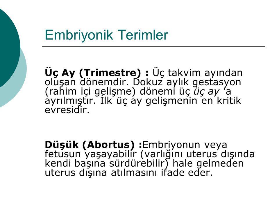 Embriyonik Terimler Üç Ay (Trimestre) : Üç takvim ayından oluşan dönemdir. Dokuz aylık gestasyon (rahim içi gelişme) dönemi üç üç ay 'a ayrılmıştır. İ
