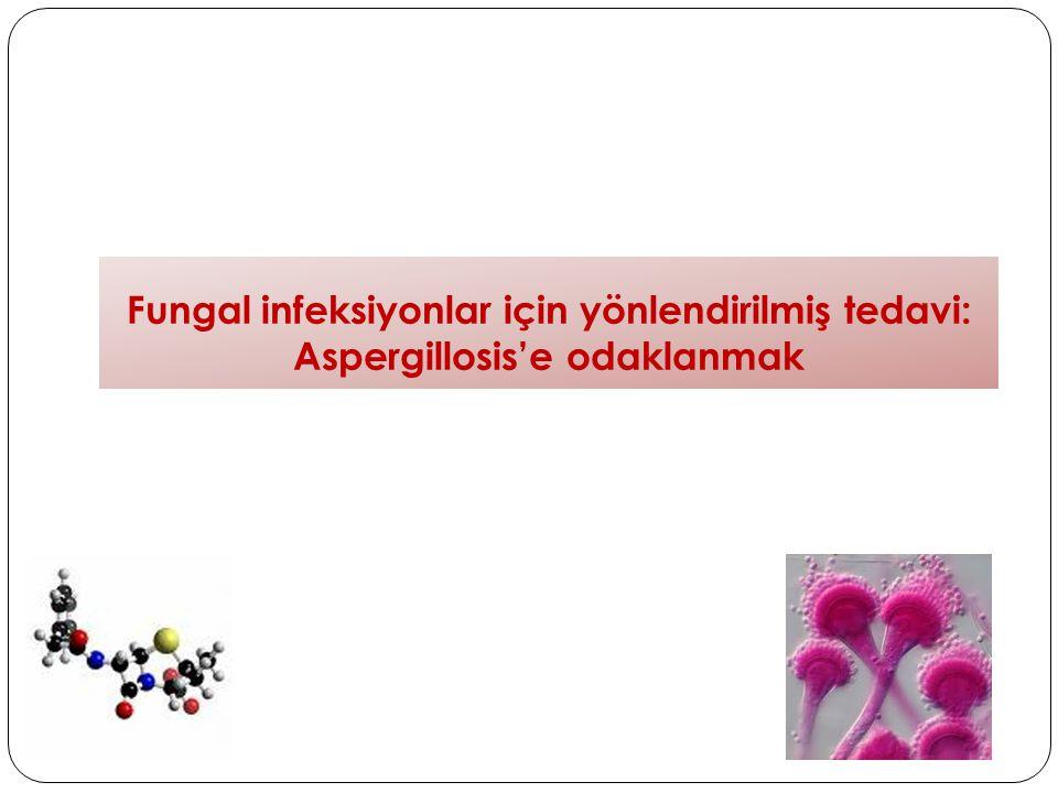 Fungal infeksiyonlar için yönlendirilmiş tedavi: Aspergillosis'e odaklanmak
