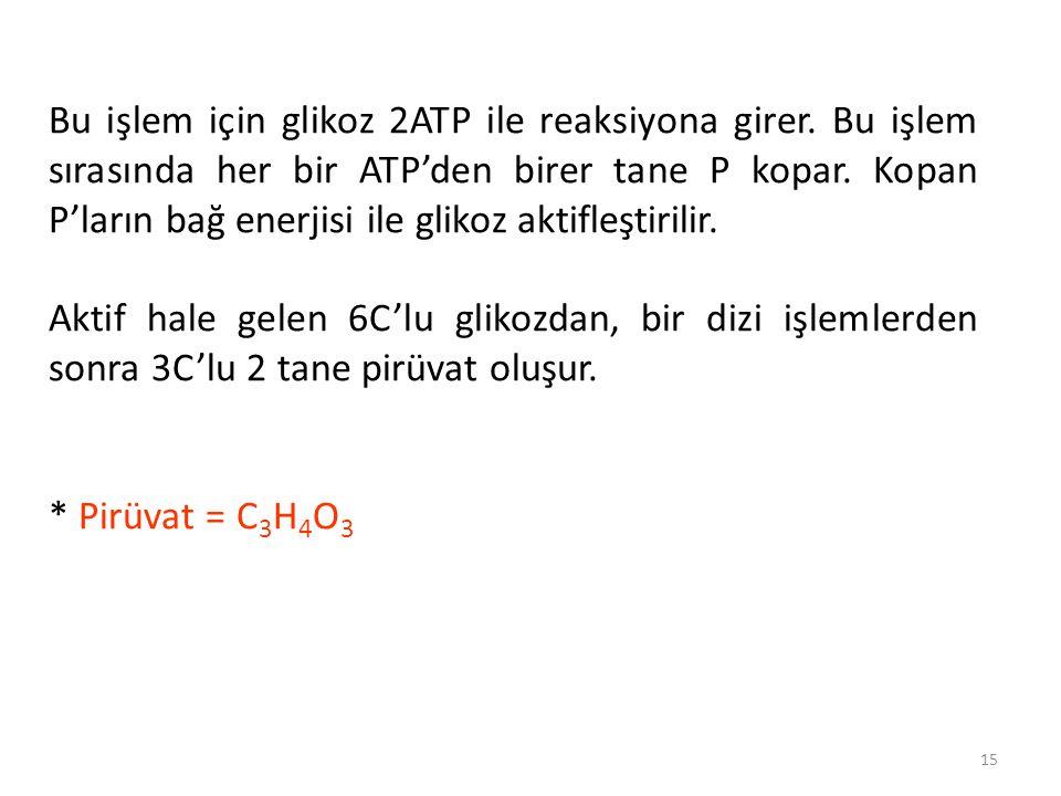 15 Bu işlem için glikoz 2ATP ile reaksiyona girer.