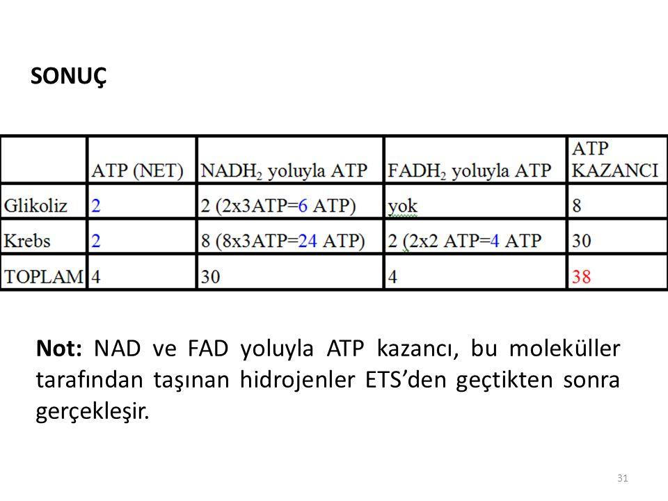 31 SONUÇ Not: NAD ve FAD yoluyla ATP kazancı, bu moleküller tarafından taşınan hidrojenler ETS'den geçtikten sonra gerçekleşir.