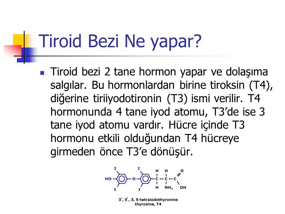 Tiroid Bezi Ne yapar?  Tiroid bezi 2 tane hormon yapar ve dolaşıma salgılar. Bu hormonlardan birine tiroksin (T4), diğerine tiriiyodotironin (T3) ism
