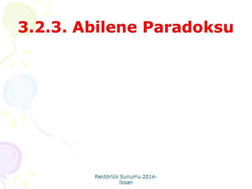Rektörlük Sunumu 2014- Nisan 3.2.3. Abilene Paradoksu