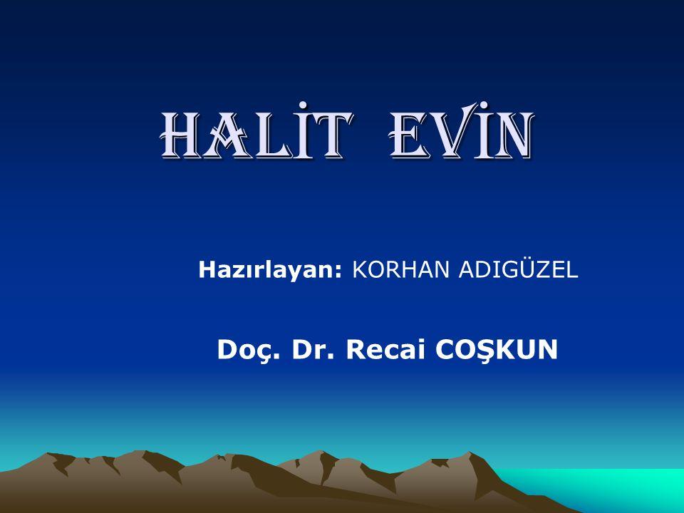 HAL İ T EV İ N Hazırlayan: KORHAN ADIGÜZEL Doç. Dr. Recai COŞKUN