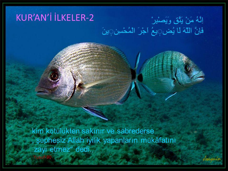 kim k ö t ü l ü kten sakınır ve sabrederse, ş ü phesiz Allah iyilik yapanların m ü kâfatını zayi etmez dedi.