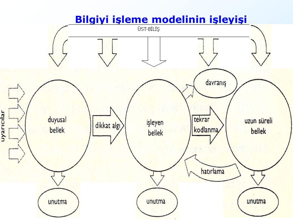 18 Bilgiyi işleme modelinin işleyişi ÜST-BİLİŞ