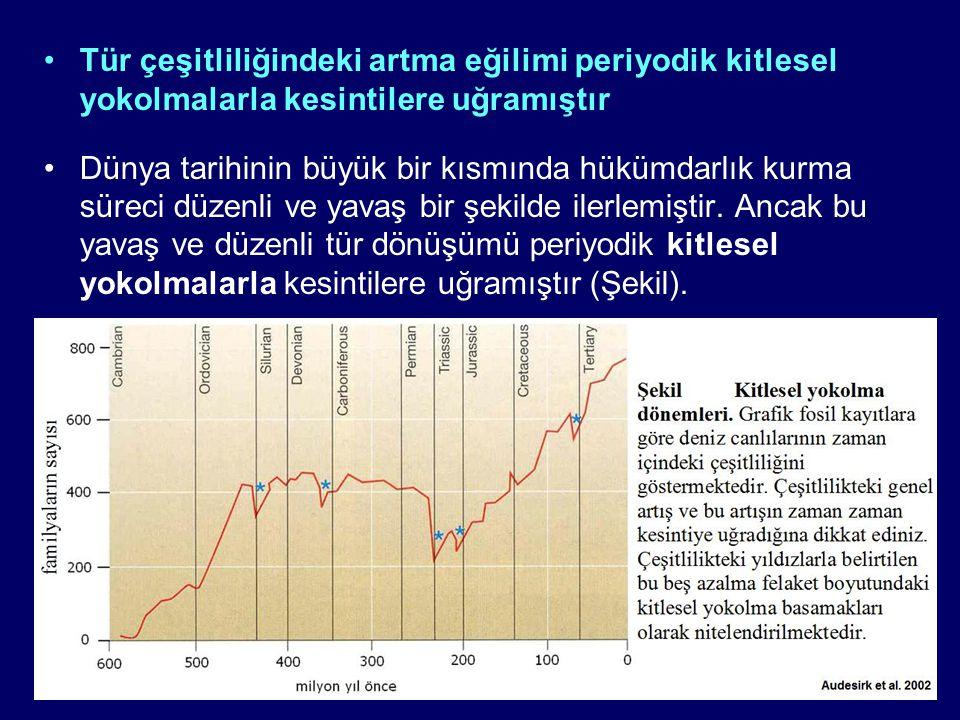 •İlk yok oluş, bundan 445 milyon yıl önce, Ordovisyen Dönem i bitiren ve Silüryen Dönemi başlatan yok oluştur.