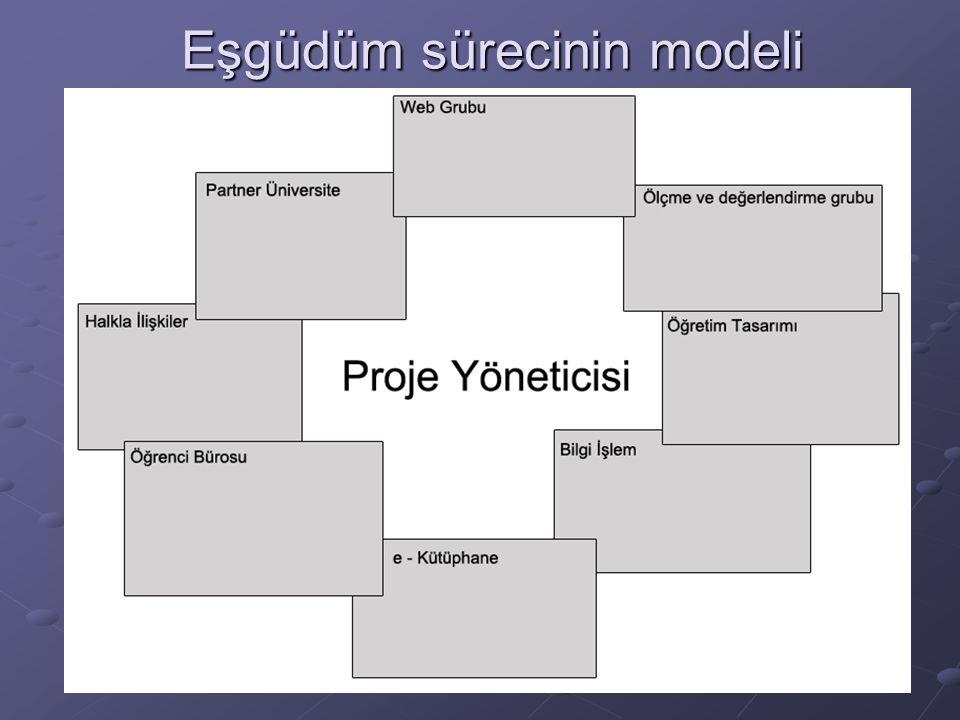 Eşgüdüm sürecinin modeli