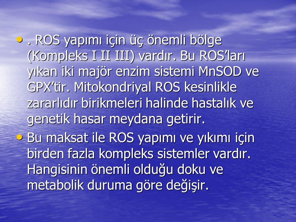 •. ROS yapımı için üç önemli bölge (Kompleks I II III) vardır. Bu ROS'ları yıkan iki majör enzim sistemi MnSOD ve GPX'tir. Mitokondriyal ROS kesinlikl
