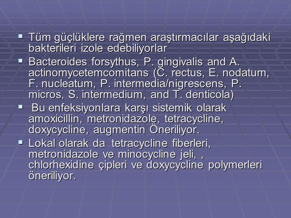  Tüm güçlüklere rağmen araştırmacılar aşağıdaki bakterileri izole edebiliyorlar  Bacteroides forsythus, P.