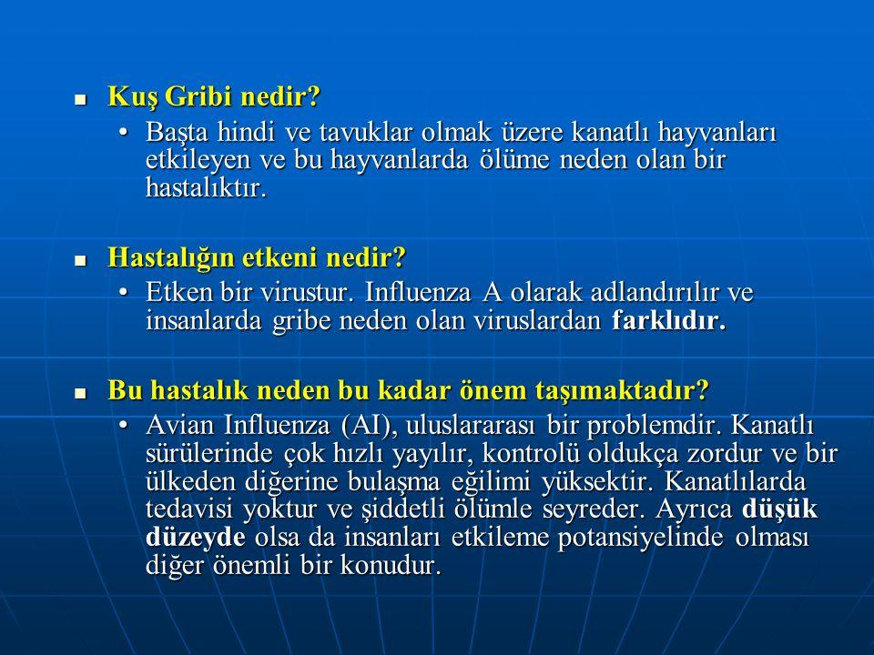  Kuş Gribi nedir? •Başta hindi ve tavuklar olmak üzere kanatlı hayvanları etkileyen ve bu hayvanlarda ölüme neden olan bir hastalıktır.  Hastalığın