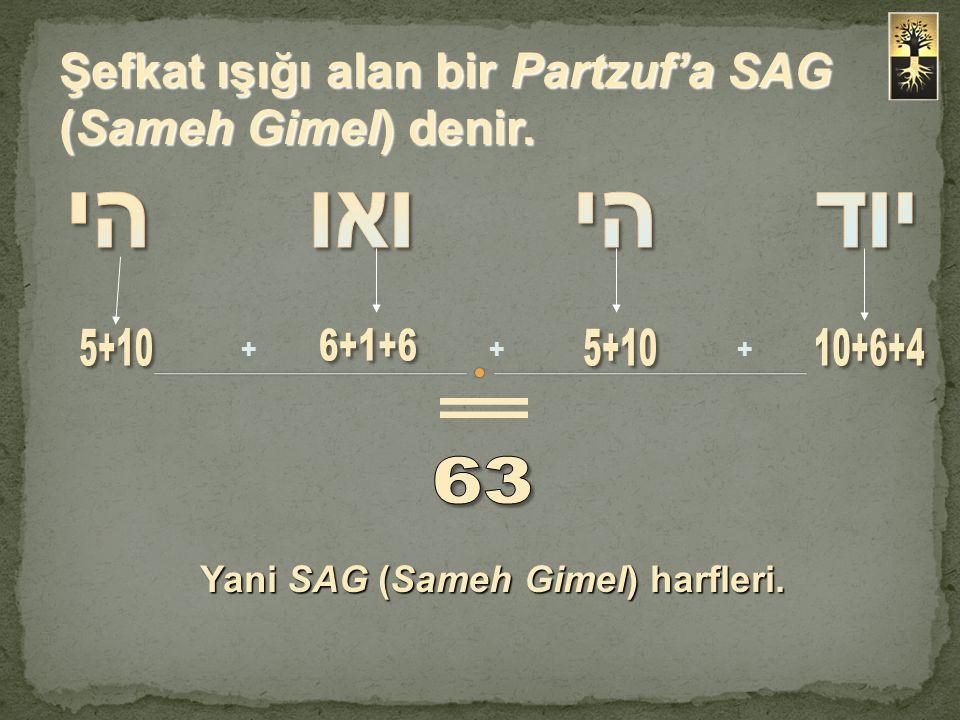 Şefkat ışığı alan bir Partzuf'a SAG (Sameh Gimel) denir. +++ Yani SAG (Sameh Gimel) harfleri.
