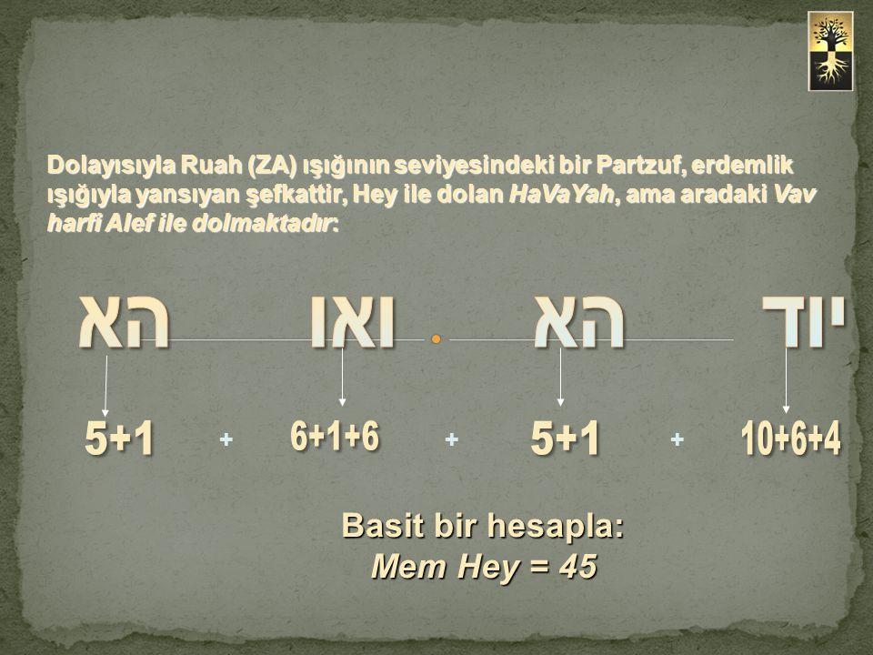 Basit bir hesapla: Mem Hey = 45 +++ Dolayısıyla Ruah (ZA) ışığının seviyesindeki bir Partzuf, erdemlik ışığıyla yansıyan şefkattir, Hey ile dolan HaVa
