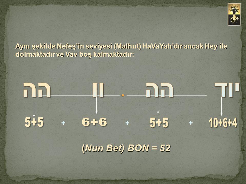 (Nun Bet) BON = 52 +++ Aynı şekilde Nefeş'in seviyesi (Malhut) HaVaYah'dır ancak Hey ile dolmaktadır ve Vav boş kalmaktadır: