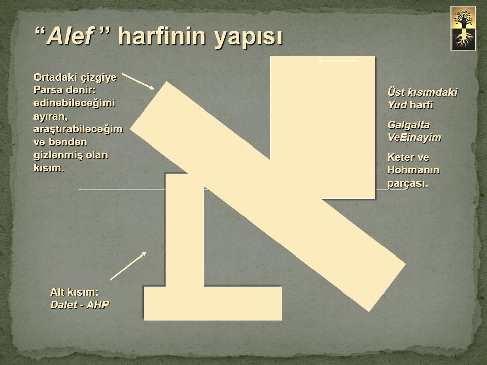 Üst kısımdaki Yud harfi Galgalta VeEinayim Keter ve Hohmanın parçası. Alt kısım: Dalet - AHP Ortadaki çizgiye Parsa denir: edinebileceğimi ayıran, ara