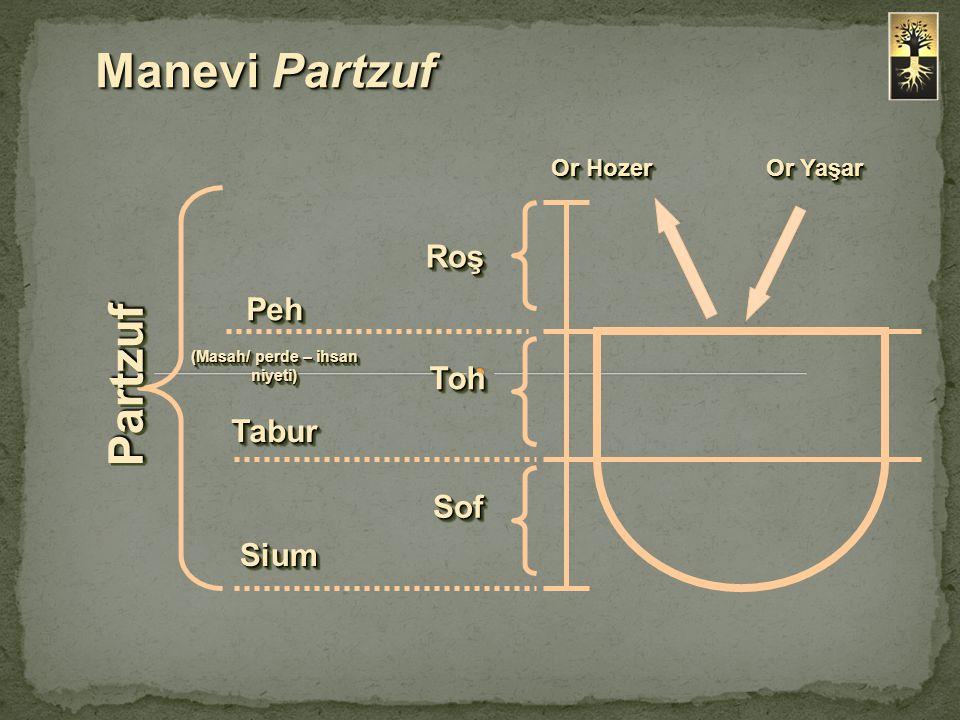Roş TohToh SofSof Manevi Partzuf Peh (Masah/ perde – ihsan niyeti) Peh TaburTabur SiumSium PartzufPartzuf Or Yaşar Or Hozer
