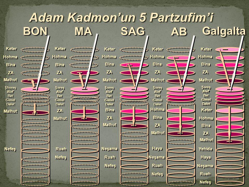 Adam Kadmon'un 5 Partzufim'i