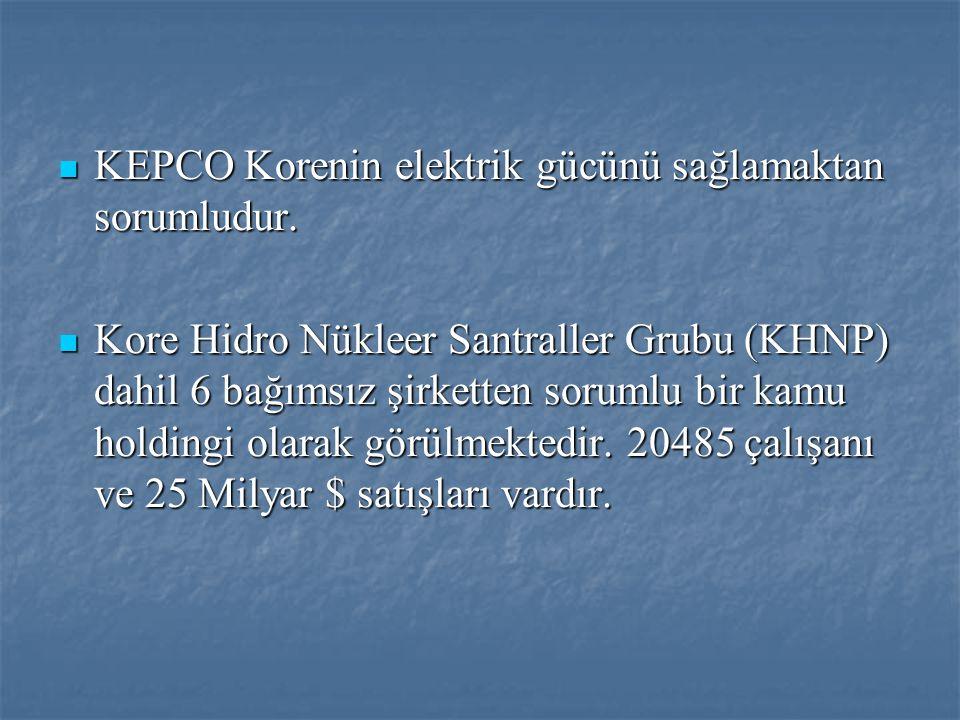  KEPCO Korenin elektrik gücünü sağlamaktan sorumludur.  Kore Hidro Nükleer Santraller Grubu (KHNP) dahil 6 bağımsız şirketten sorumlu bir kamu holdi