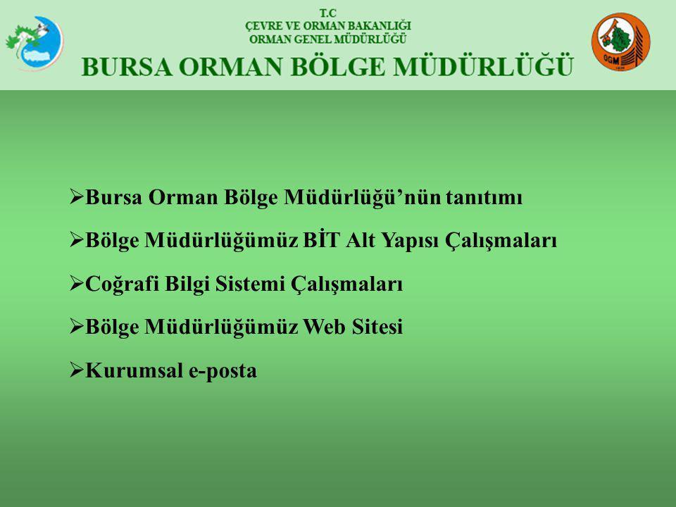  Bursa Orman Bölge Müdürlüğü'nün tanıtımı  Bölge Müdürlüğümüz BİT Alt Yapısı Çalışmaları  Coğrafi Bilgi Sistemi Çalışmaları  Bölge Müdürlüğümüz We
