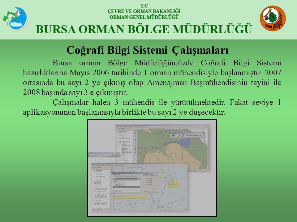 Bursa orman Bölge Müdürlüğümüzde Coğrafi Bilgi Sistemi hazırlıklarına Mayıs 2006 tarihinde 1 orman mühendisiyle başlanmıştır. 2007 ortasında bu sayı 2
