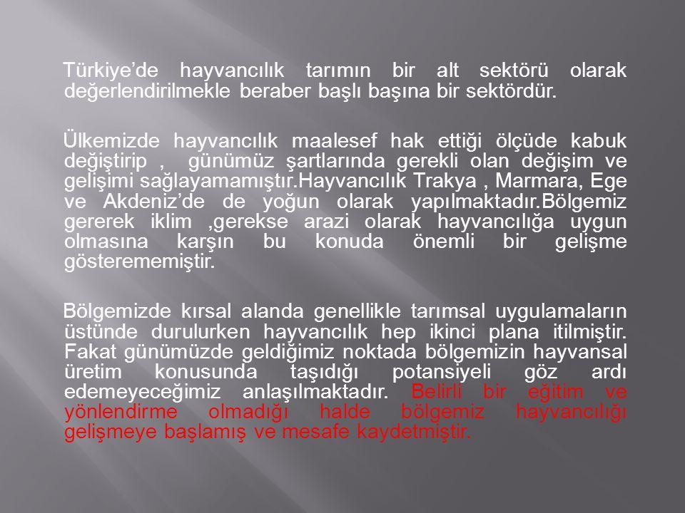 Türkiye'de hayvancılık tarımın bir alt sektörü olarak değerlendirilmekle beraber başlı başına bir sektördür. Ülkemizde hayvancılık maalesef hak ettiği