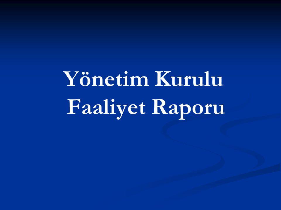 Yönetim Kurulu Faaliyet Raporu