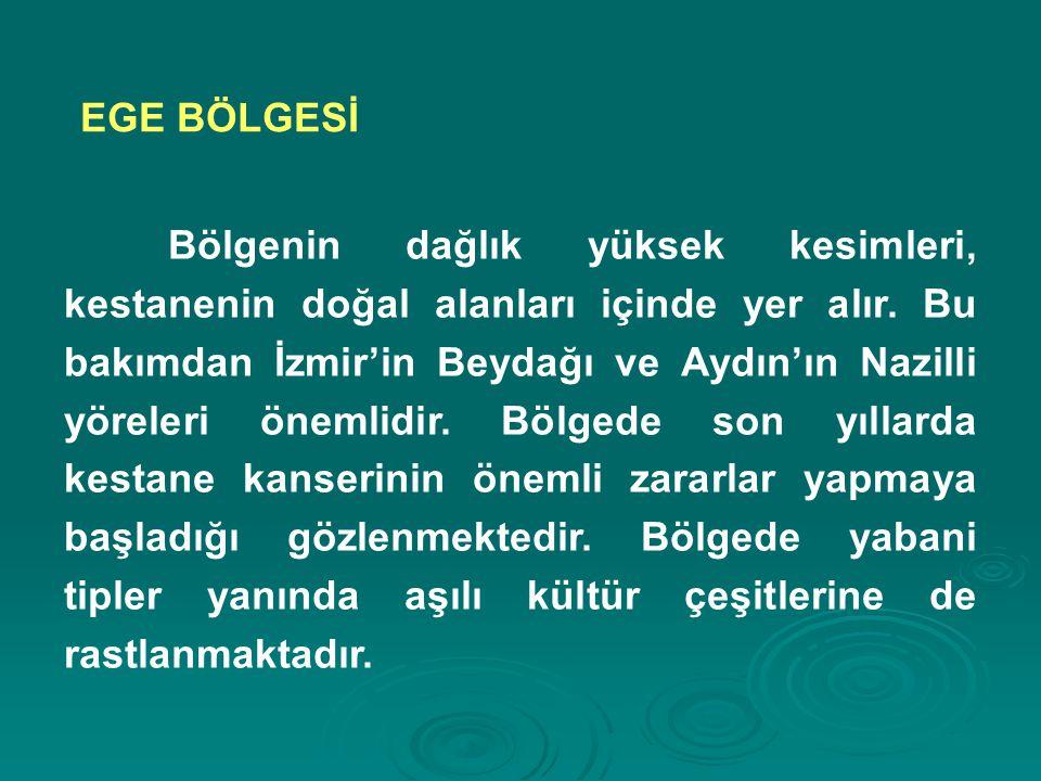 Bölgenin dağlık yüksek kesimleri, kestanenin doğal alanları içinde yer alır. Bu bakımdan İzmir'in Beydağı ve Aydın'ın Nazilli yöreleri önemlidir. Bölg