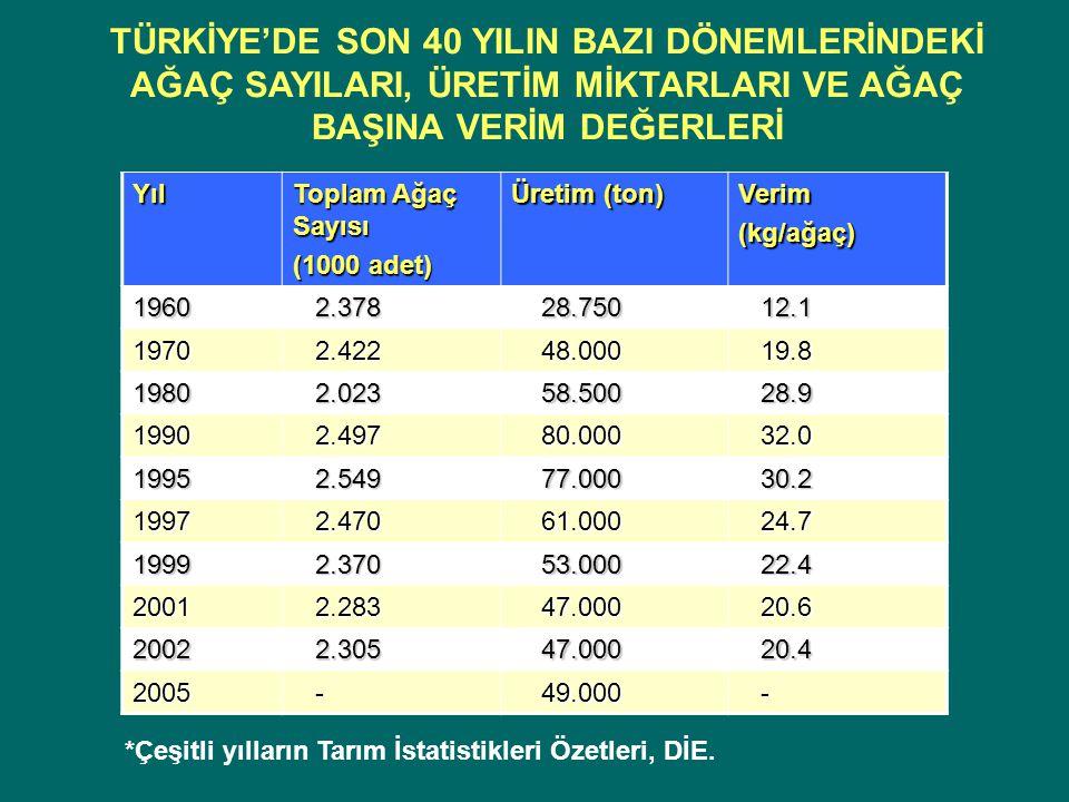 Yıl Toplam Ağaç Sayısı (1000 adet) Üretim (ton) Verim(kg/ağaç) 1960 2.378 2.378 28.750 28.750 12.1 12.1 1970 2.422 2.422 48.000 48.000 19.8 19.8 1980