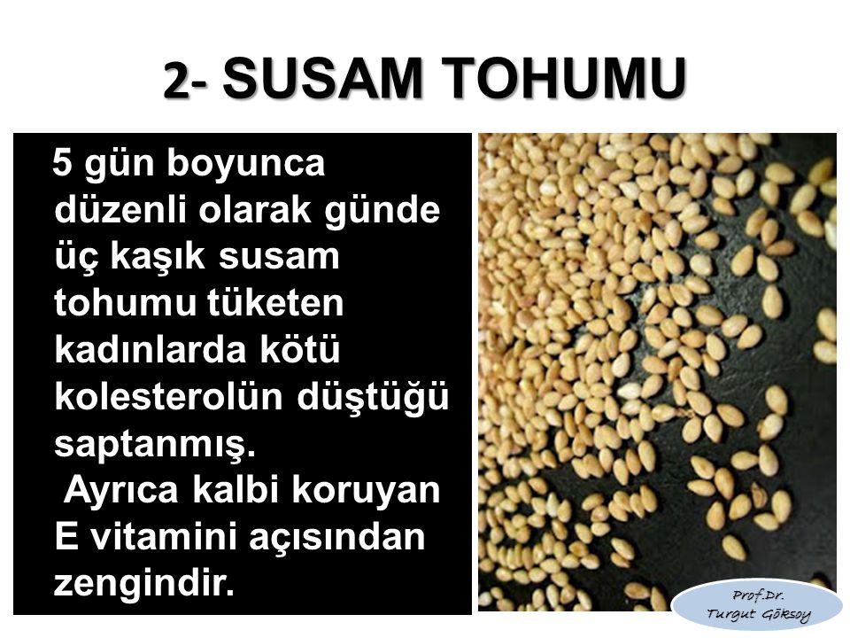 2- SUSAM TOHUMU 5 gün boyunca düzenli olarak günde üç kaşık susam tohumu tüketen kadınlarda kötü kolesterolün düştüğü saptanmış. Ayrıca kalbi koruyan