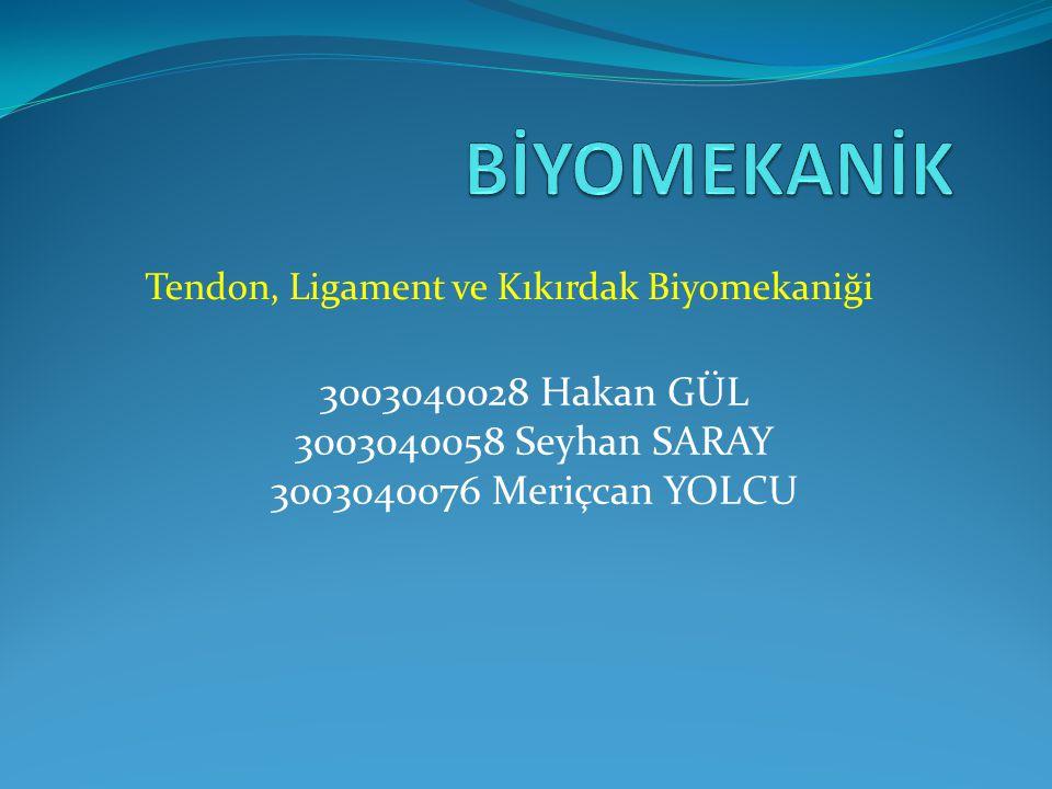 Tendon, Ligament ve Kıkırdak Biyomekaniği 3003040028 Hakan GÜL 3003040058 Seyhan SARAY 3003040076 Meriçcan YOLCU